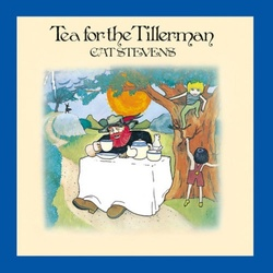 Cat Stevens Tea For The Tillerman Analogue Productions 200gm vinyl LP g/f