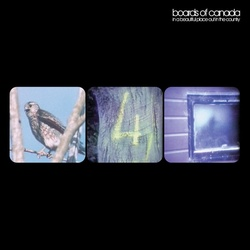 Boards Of Canada In A Beautiful Place EP Remastered vinyl 12""