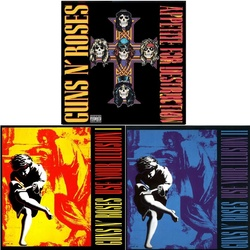 Guns 'N Roses Illusion 1 and 2 plus Appetite For Destruction 3 x vinyl LP s