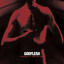 Godflesh A World Lit Only By Fire vinyl LP